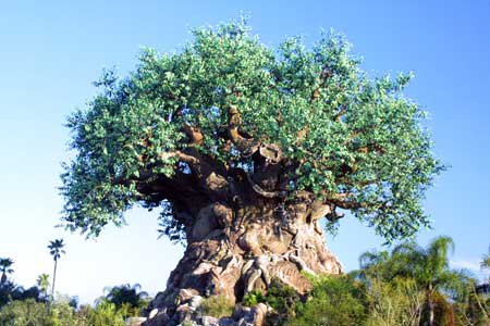 What the F, Tree of Life?